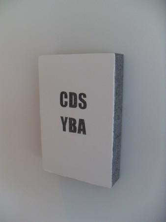 CDS / YBA  (2010)
